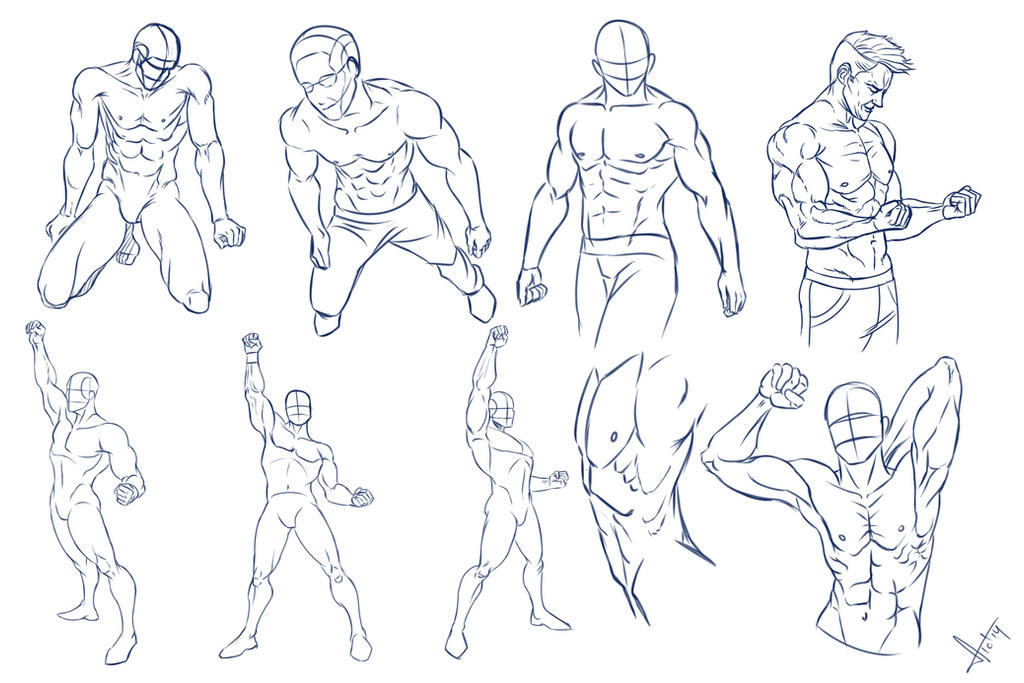 Heroic poses and torsos by victter-le-fou