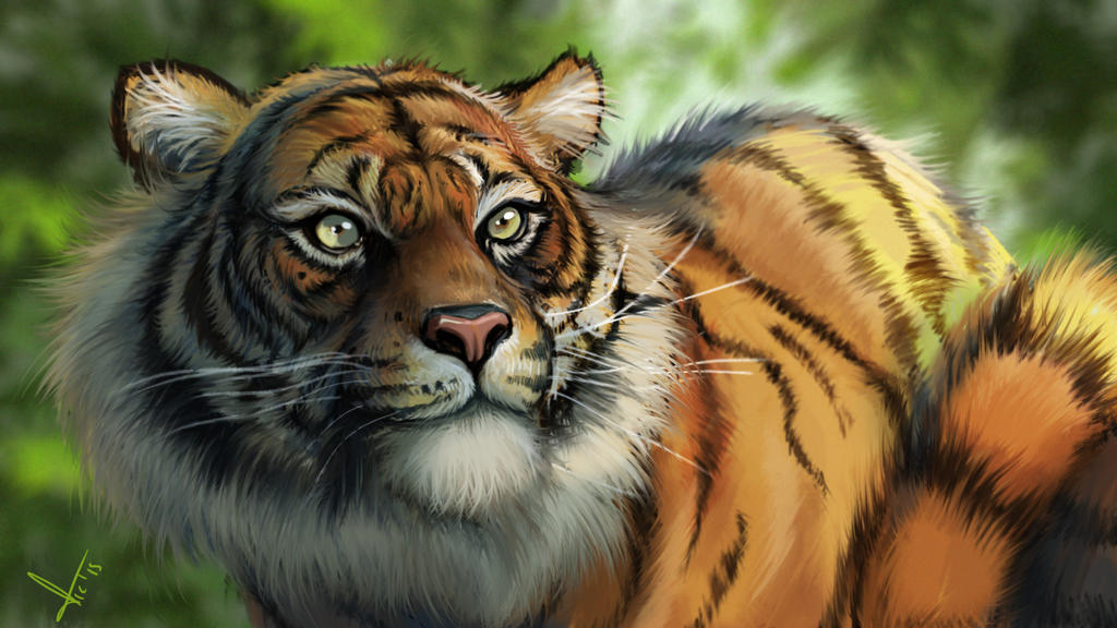 Tiger, digital paint. by victter-le-fou