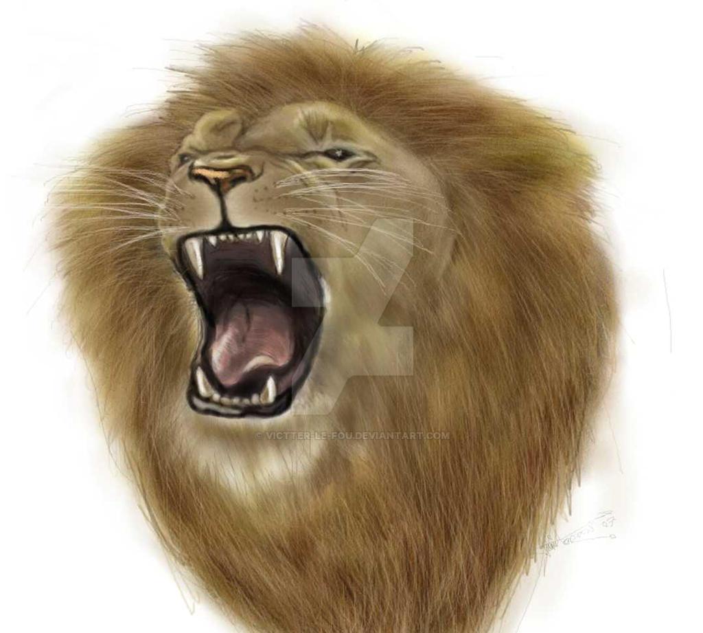 Lion roar by victter-le-fou on DeviantArt - photo#20