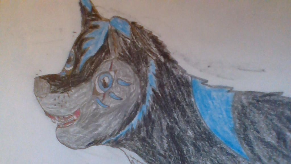 Shadowhunter anime wolf by shadow0042