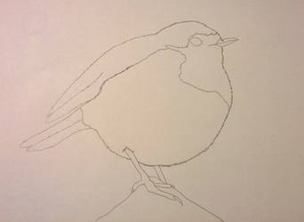 Traced Robin by blackcatofindelay