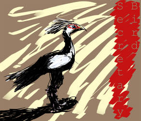 Quicksketch: Secretary Bird