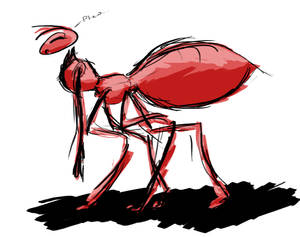 Tired Ant