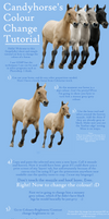Changing Horse Colour