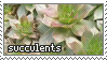 succulents stamp by gunsweat