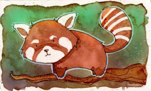 Red Panda by ZestyDoesThings