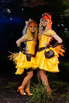Chocobo Cabaret Chicks
