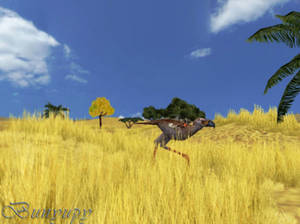 The great yellow plains 1