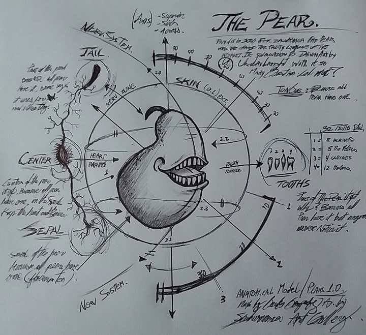 The Pear (anatomical drawing) by mistercrane09