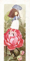 Rosa by nguyenshishi
