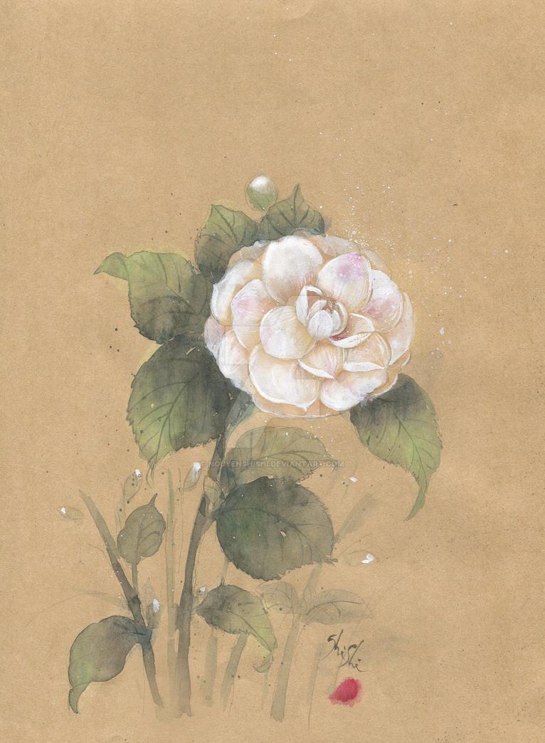 White Camellia by nguyenshishi
