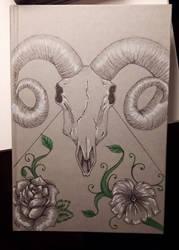 Skull cover by Shinda-Tori