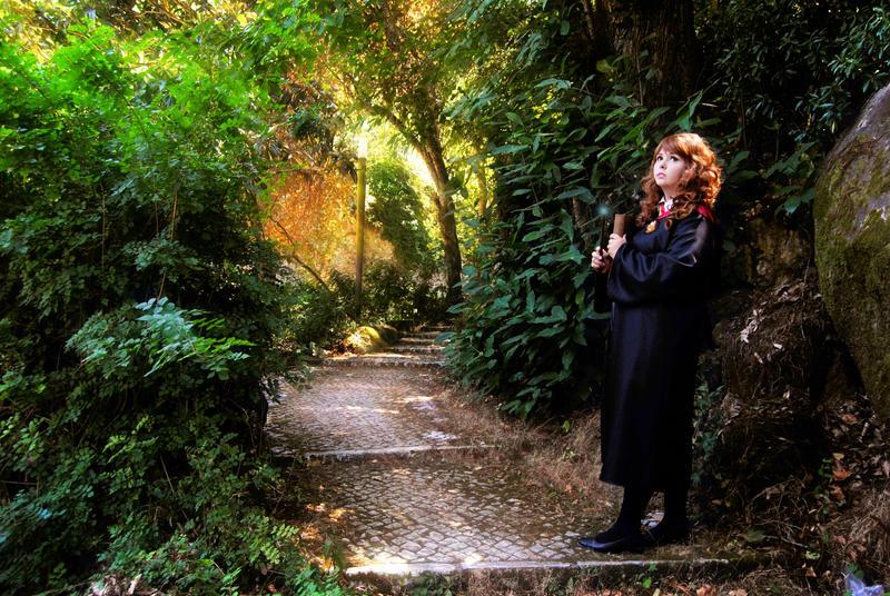 Hermione Granger by Gaaaooo
