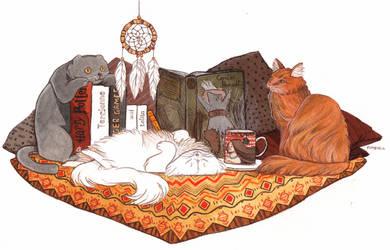 Cats by TinaDrawS