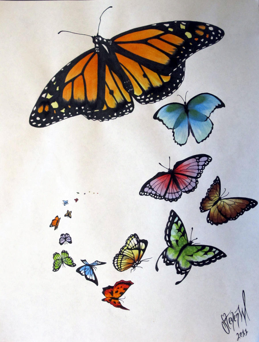 butterfly flash page by stevenworthey on deviantart