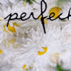 perfect by CameronRS