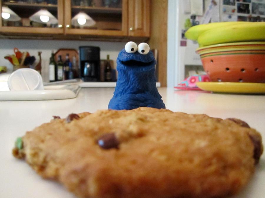 Cookie Monster-Monster Cookie