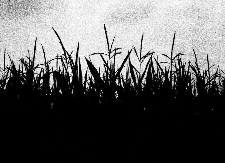 Fields of Woe by Souldish