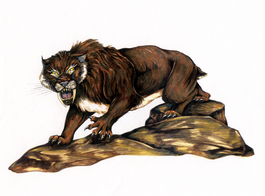 Sabertooth Cat by VTWC