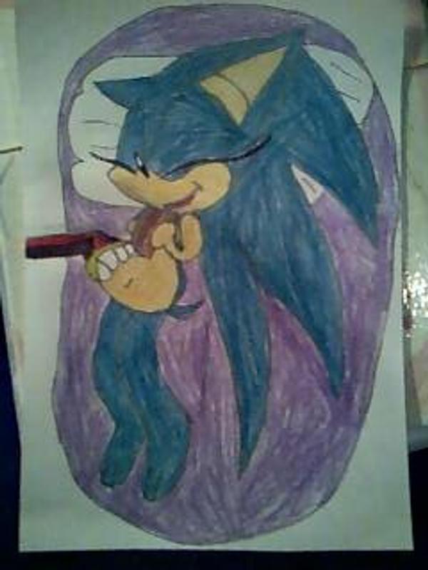Sonic Mpreg contest by PrincessShannon07