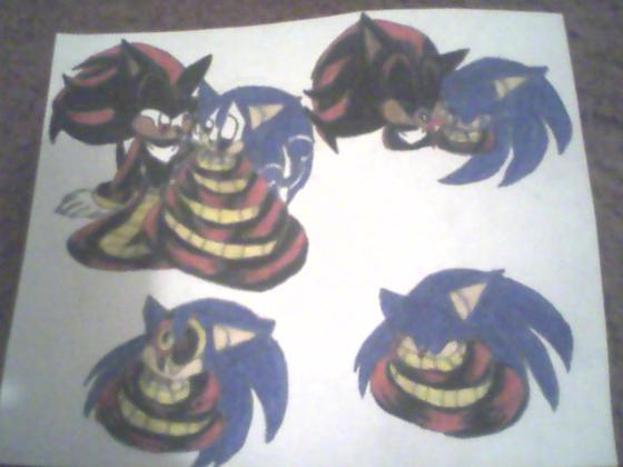 Naga Shadow and Neko Sonic by princessshannon07