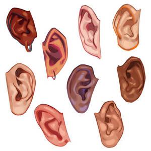 Ear Studies
