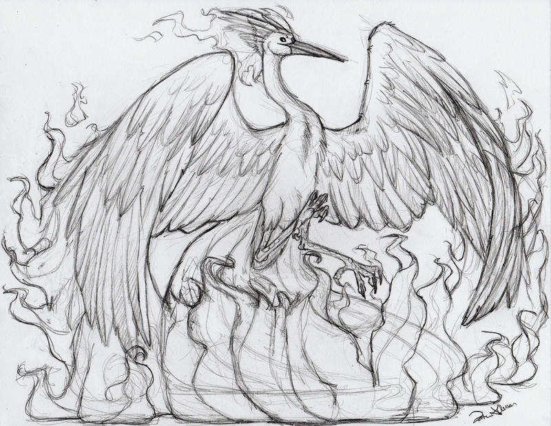 Moltres lines by thesolitarysandpiper on deviantart for Moltres coloring pages
