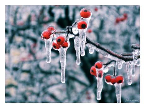 Frozen Moments
