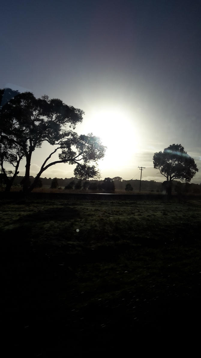 Sunrise by AusFurbyMogwaiFan