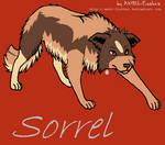 Sorrel-My Chicken Smoothie Dog