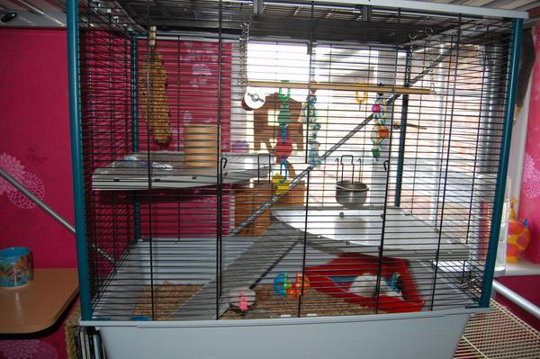 furet cage by ruvaak on deviantart. Black Bedroom Furniture Sets. Home Design Ideas