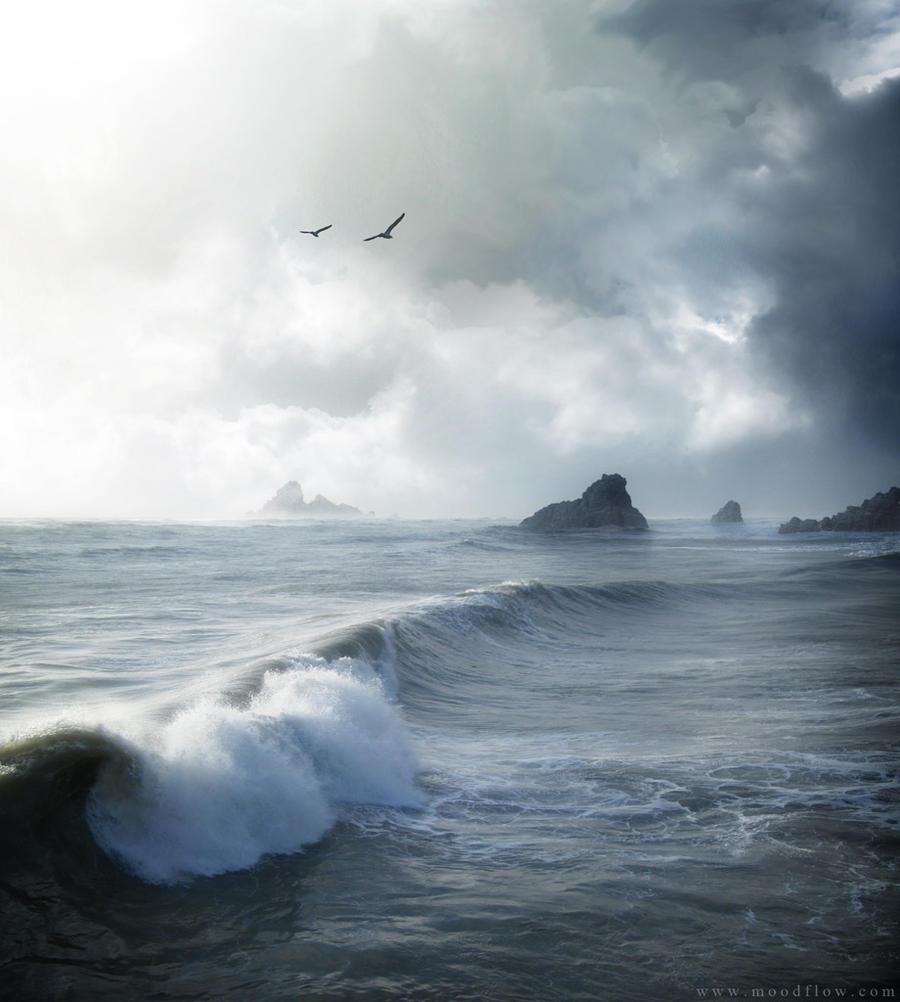 Lost Coast 2010 by moodflow