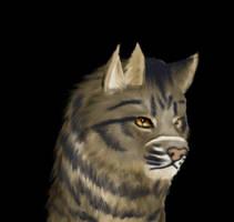 Tigerstar by gyerfry-the-wolf
