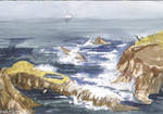 Dana Point Waves