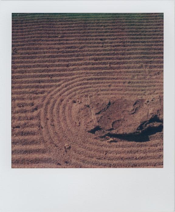 Zen Sand Garden by futurowoman