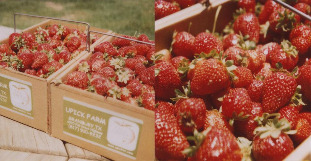 Strawberry Picking by futurowoman