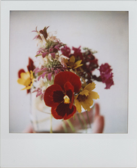 A Wildflower Bouquet by futurowoman