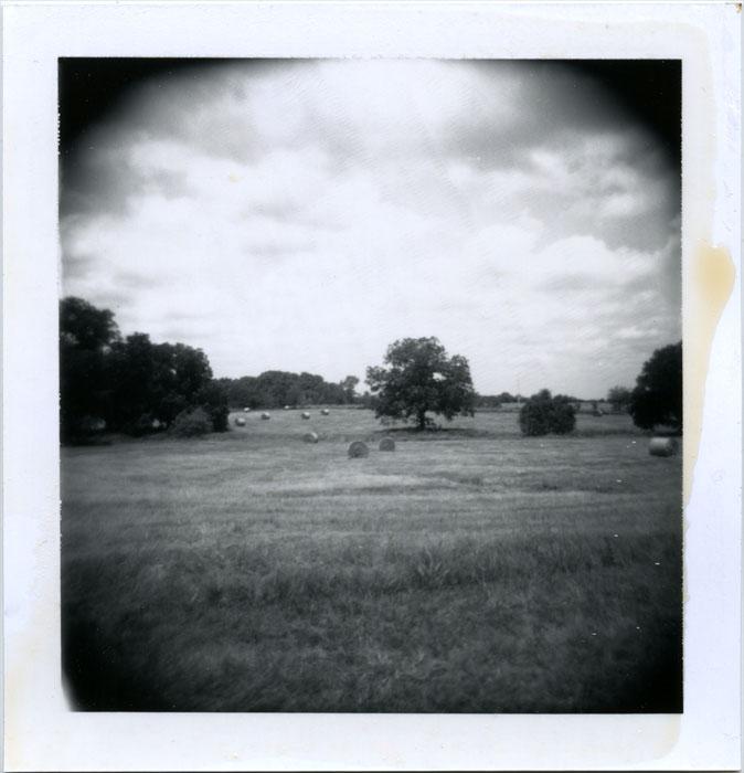new hay by futurowoman