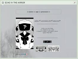ECHO IN THE MIRROR [custom box code] flash warning by trsutfunds