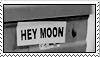 hey moon by Tbearmn22