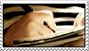 Hands in writting. by Tbearmn22