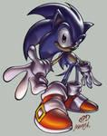 S O N I C - the Hedgehog