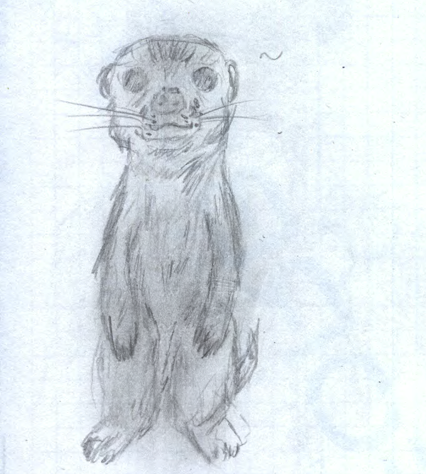 I've drawn a meerkat by sfxdx