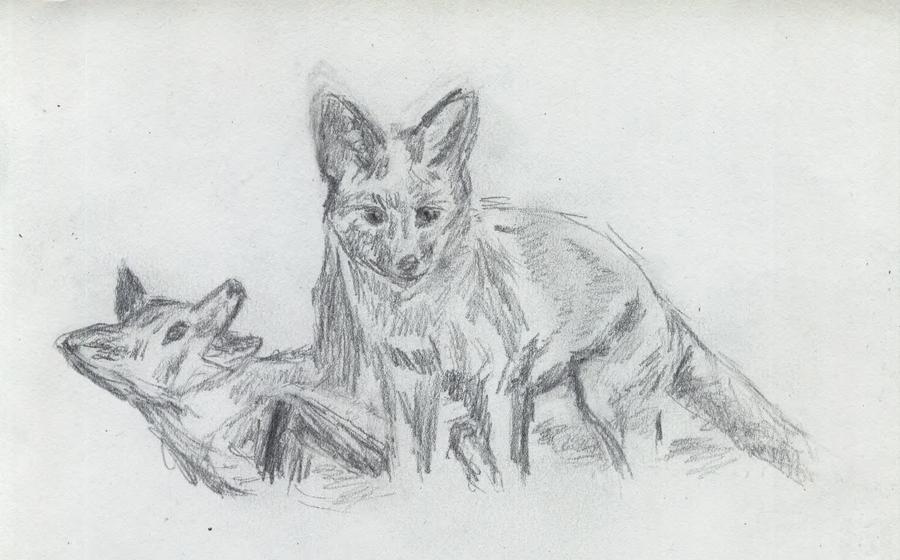 Fox kits by sfxdx