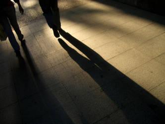 Sombras en la tarde