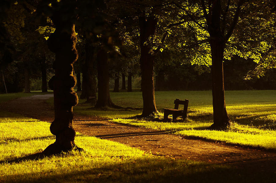 in the park...