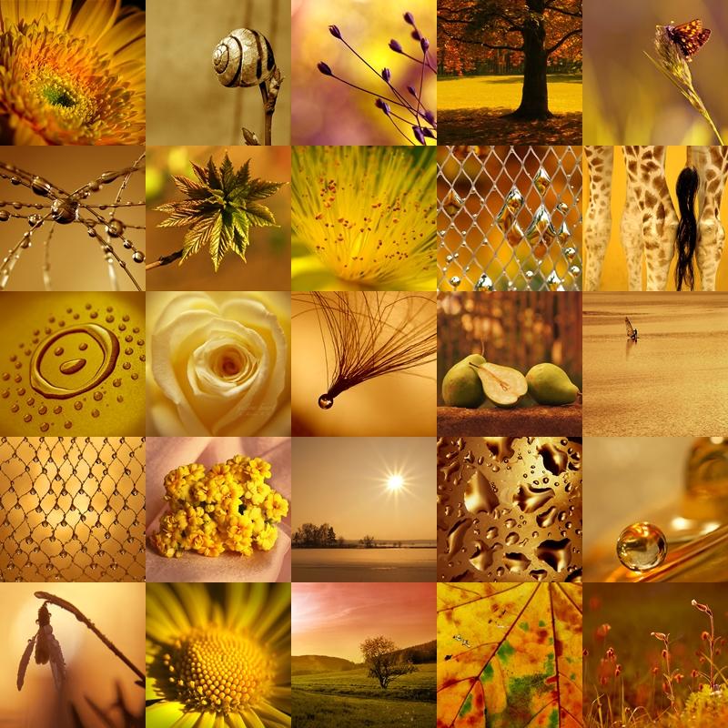 golden by AdrianaKH-75