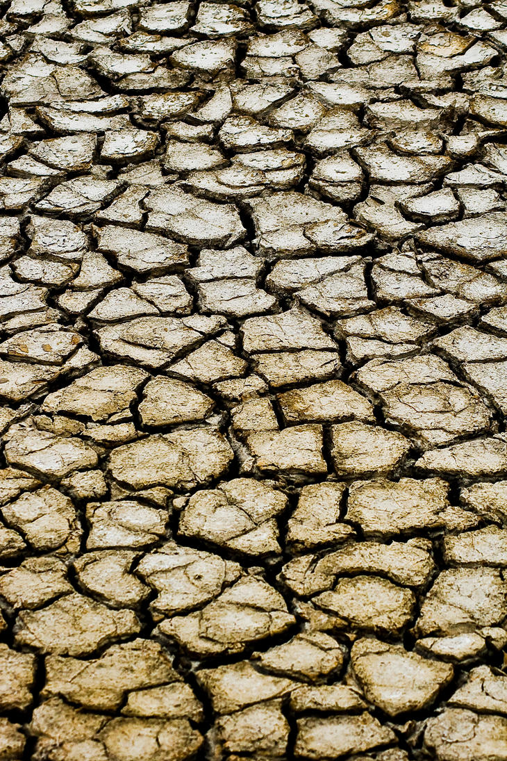 img-043574 cracked dry mud 01 by StockStockStuff