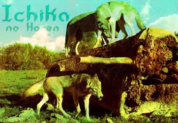Ichika by TawnyW