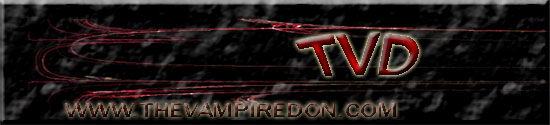 TVD Banner Entry 1 by Blackittyrose004